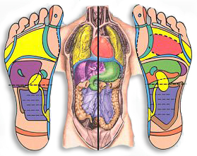 Reflexology feet charts & the origins of Reflexology